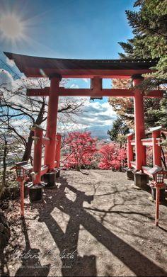 Photo Japon, Japan Photo, The Beautiful Country, Beautiful Places, Places To Travel, Places To Go, Japanese Shrine, Torii Gate, Aesthetic Japan