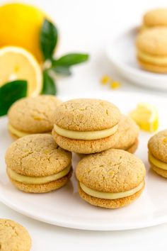 Lemon curd sandwiched between soft and chewy paleo lemon cookies in this dairy-free sweet treat! These amazing paleo cookie sandwiches are also grain-free and dairy-free. You will not be disappointed. Paleo Cookies, Lemon Cookies, Yummy Cookies, Paleo Cupcakes, Lemon Desserts, Lemon Recipes, Light Desserts, Fodmap Recipes, Potato Recipes