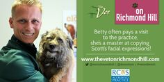 Dr Scott Miller with his Border Terrier Betty Richmond Hill, Border Terrier, Facial Expressions, Dogs, Fun, Animals, Face Expressions, Fin Fun, Animales