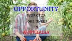 8 Types Of Opportunities Of Work For Foreigners In Australia