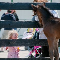 Upload your best weather photos or watch them in our searchable gallery. Most Popular. Weather Network, Close Encounters, Most Popular, Horses, Spring, Animals, Animales, Animaux, Popular