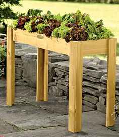 Raised Herb Garden Ideas tall raised bed salad table garden – gardening with back pain