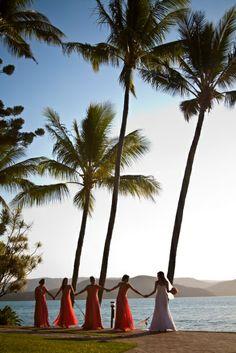 #daydreamisland #wedding #destinationwedding #whitsundays #queensland #australia #tropical #island #paradise  http://www.daydreamisland.com/fw_weddings/index.html  Email: weddings@daydreamisland.com