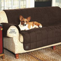 Etonnant Belsofa Furniture Cover   Dog Beds, Dog Harnesses And Collars, Dog Clothes  And Gifts