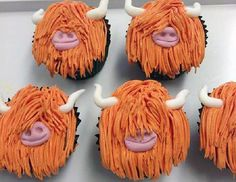 Highland cows cupcakes.