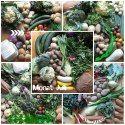 amberlight-label: Solidarische Landwirtschaft Sche Sprouts, Vegetables, Fruit, Agriculture, Vegetable Recipes, Veggies