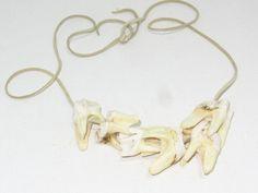 Mountain man necklace....  a575.... Moose teeth necklace,.... replica primitive...