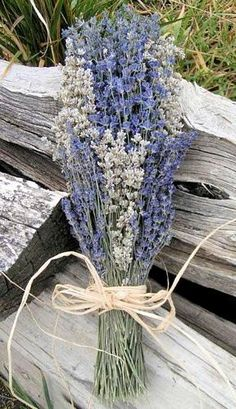 Purple and white lavender bridesmaid bouquets... beautiful