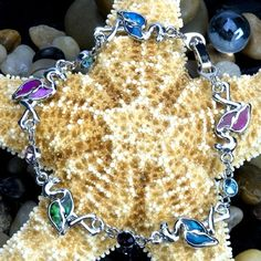 Paua Shell Bracelet - Flamingo at theBIGzoo.com, an animal-themed store established in August 2000.