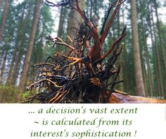 ... a decision's vast extent ~ is calculated from its interest's #sophistication !