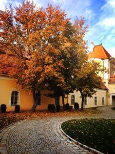 welcome here | Chateau Bela #autumn Big Country, Bratislava, Lonely Planet, Czech Republic, Prague, Bridges, Roots, Exterior, Autumn