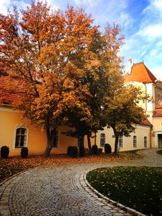 welcome here | Chateau Bela #autumn