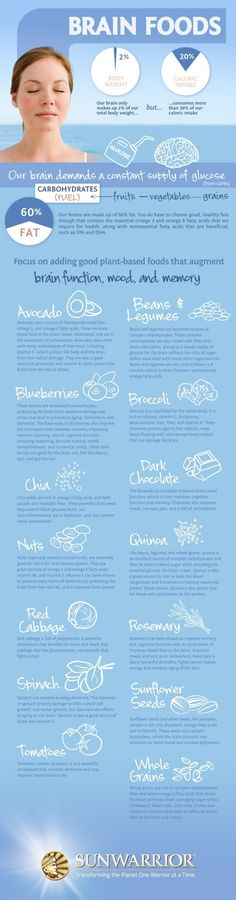 Brain Foods Infographic