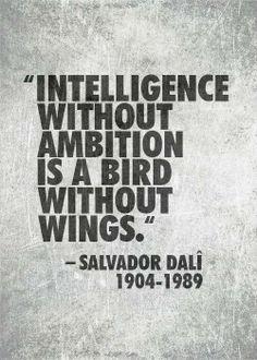 Life Philosophy: Intelligence without ambition is like...