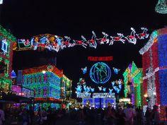 Christmas at Disneyworld  Hollywood Studios Osborne lights  December 2013.