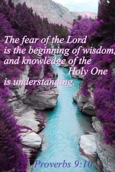 PROVERBS 10 The fear of the Lord is the beginning of wisdom, and knowledge of the Holy One is understanding. Fear Of The Lord, Love The Lord, God Is Good, Gods Love, Scripture Verses, Bible Verses Quotes, Bible Scriptures, Proverbs Bible Quotes, Wisdom Bible