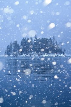 Heavy Snowfall at Eibsee, Bayern, Germany, by Stefan Gerzoskovitz, on Winter Szenen, Winter Magic, Winter Holidays, Never Summer, I Love Snow, Snowy Day, Snow Scenes, Nature Photos, Beautiful Landscapes