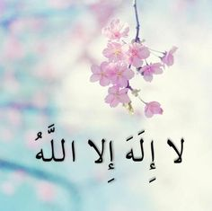 There is no God but Allah (which means there is only one true god Allah)