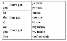 Język angielski dla dzieci - Have got