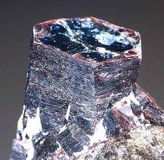 Tetraferriphlogopite, KMg3Fe+++Si3O10(OH)2, Kovdor, Kola Peninsula, Russia. Dark bronze colored pseudo-hexagonal, prismatic crystals to 1.2cm