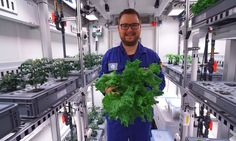 Scientists harvest vegetables in Antarctic greenhouse - 'Scientists in Antarctica have harvested their first crop of vegetables grown without earth, daylight or pesticides as part of a project designed to help astronauts cultivate fresh food on other p Growing Vegetables, Growing Plants, Latest Scientific Discoveries, Space Colony, Green House Design, Mission To Mars, Science News, Harvest, Cool Designs