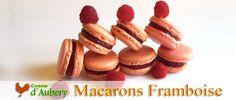 Les Macarons à la Framboise de Christophe Felder