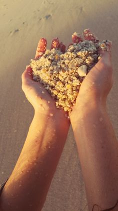 Blouberg, Cape Town South African Holidays, Felt Hearts, Cape Town, West Coast, Nostalgia, Beach, House, Beautiful, The Beach