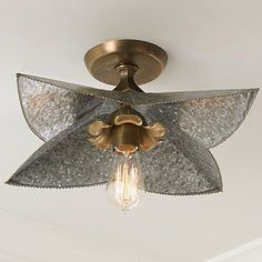 Galvanized Bloom Ceiling to Wall Sconce