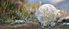 Billedresultat for Gefrorene Seifenblasen