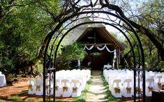 Bush Wedding, Wedding Decorations, Table Decorations, Wedding Venues, Bridal, Home Decor, Wedding Reception Venues, Wedding Places, Decoration Home