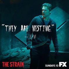 The Strain FX