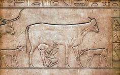 Limestone relief; sarcophagus Queen Kwit (consort of King Mentuhotep II); ca. 2061-2010 B.C.; Egyptian Museum, Cairo.