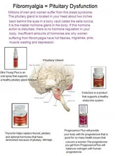 Young Living Essential Oils:
