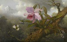 "Martin Johnson Heade  ""Cattleya Orchid, Two Hummingbirds and a Beetle"""