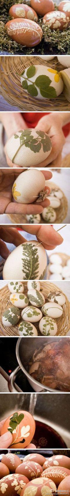 pretty prints on eggs