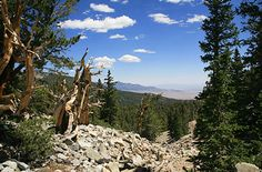 America's Cleanest Air And Loneliest National Park: Great Basin