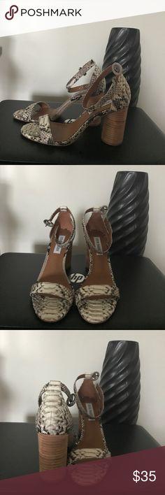 Steve Madden Dress Sandals, 6.5. Snake print. Steve Madden Dress Sandals, 6.5. Snake print. Steve Madden Shoes Sandals
