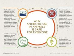 Is Antibiotic use in animals safe? - Source from the USA, but similar facts in Canada