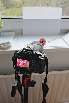 Low Budget: DIY Home Studio - Sonja Sausgruber - Papéis De Parede, Sapatos, Fotografia, As Fotos Photography Lessons, Light Photography, Macro Photography, Photography Tutorials, Creative Photography, Digital Photography, Photography Ideas, Photography Studios, Inspiring Photography