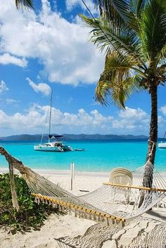 The best beach bar in the Caribbean (possibly the world) - Soggy Dollar Bar, Jost Van Dyke. Dibs on the hammock.