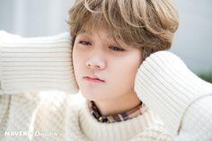 Ren (Nu'est W) - The man came from paintings Nuest Kpop, Nu'est Jr, Boy Idols, Me Anime, Kim Dong, Nu Est, Pledis Entertainment, Asian Boys, Jonghyun