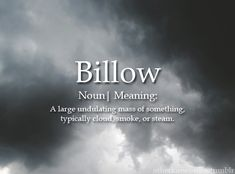 "otherkinwords:  "" Billow  noun 