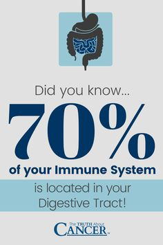 Having a healthy gut is ESSENTIAL. Did you know... 70% of your immune system is located in your digestive tract?! A healthy stomach is like a guard dog against unwelcome parasitic invaders. The right choice of foods & lifestyle habits is critical to your overall health. Click through to read on as Dr. Wolfe shares with you the list of substances that can lead to major intestinal complications. Please re-pin to bring more awareness about a healthy digestive tract & its role in fighting…