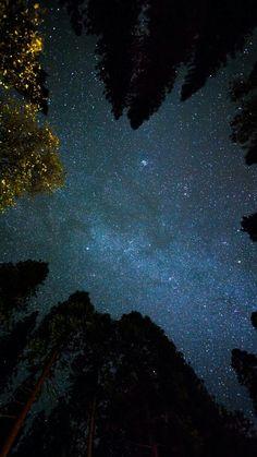 A night under the stars...