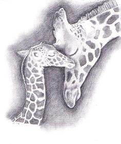 Giraffe Drawing | Giraffe drawing. | posters and art