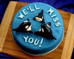 Orca whale cake