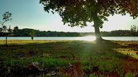 """Natureza e Vida: FOTOS: NATUREZA, RIOS E AVES. http://quintanaeterno.blogspot.com.br/2008/12/uma-das-frases-mais-simples-e-ao-mesmo.html + """"Nesses tempos de céus de cinzas e chumbos, nós precisamos de árvores desesperadamente verdes."""" - Mário Quintana  ~~~~~ FUTURO?! Repensemos: o que herdarão nossos descendentes ?!! ..."""