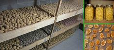 Preserving Potatoes Year Round – A Solid Choice for Preppers