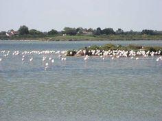 VIAJAR EN AUTOCARAVANA :: Viaje al Golfo de León Francés