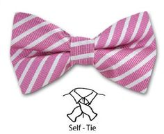 Pink - White Fashion Bow Tie in Self-Tie with Striped